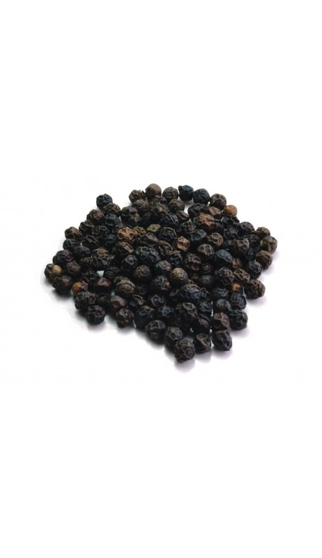 Pfeffer schwarz Tellicherry, extrabold, original indisch, keimreduziert