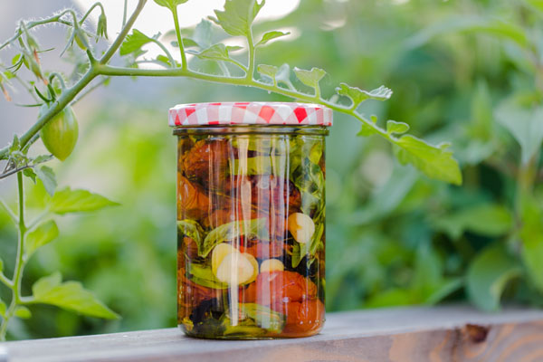 Getrocknete Tomaten in Olivenöl einlegen: selbstgemacht!